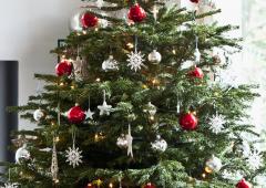 Vánoce klepou na dveře! Pomozte je zpříjemnit dětem, ale také čtyřnohým mazlíčkům