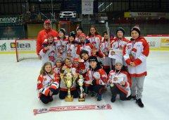 6. třída (ročník 2008) si z turnaje v Jihlavě odvezla zlaté medaile!