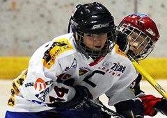 Bobøi roèníku narození 2002 se zúèastnili turnaje v Letòanech