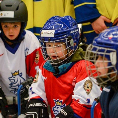 MEO Aréna ožila Týdnem hokeje, Zubři na zábavu na ledě přilákali pětatřicet dětí