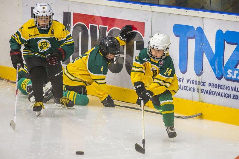 Přijďte v úterý 24. 1. 2017 na Zimní stadion Na Lapači ve Vsetíně na akci Týden hokeje