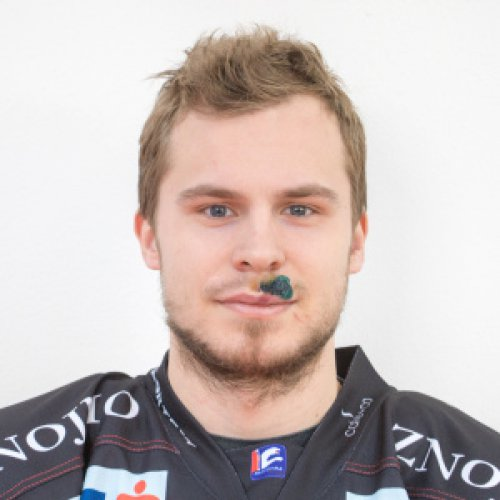 Petr Šenkeøík