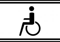Informace pro fanoušky na invalidním vozíku a jejich doprovod