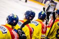 Českobudějovičtí hokejisté ze střídačky sledují zápas