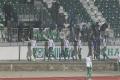 fans_mfk_skalica