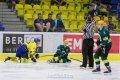 ZUBR Cup: HC ZUBR Přerov - VHK ROBE Vsetín