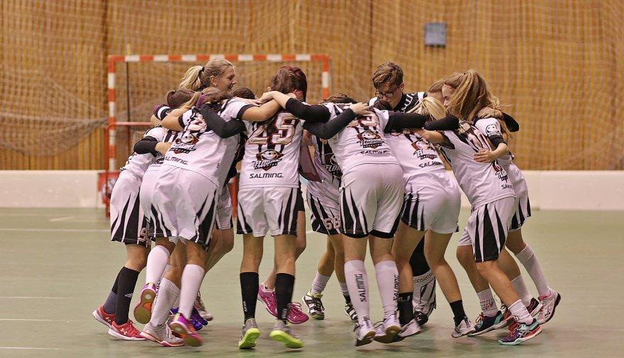 Ženy po výborném výkonu porazily vedoucí Prague Tigers Nehvizdy