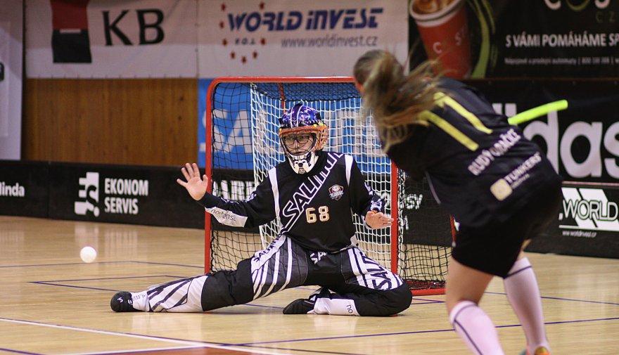 Další víkendový dvojzápas žen. Derby s Lítvínovem a osmifinále poháru v Týně!